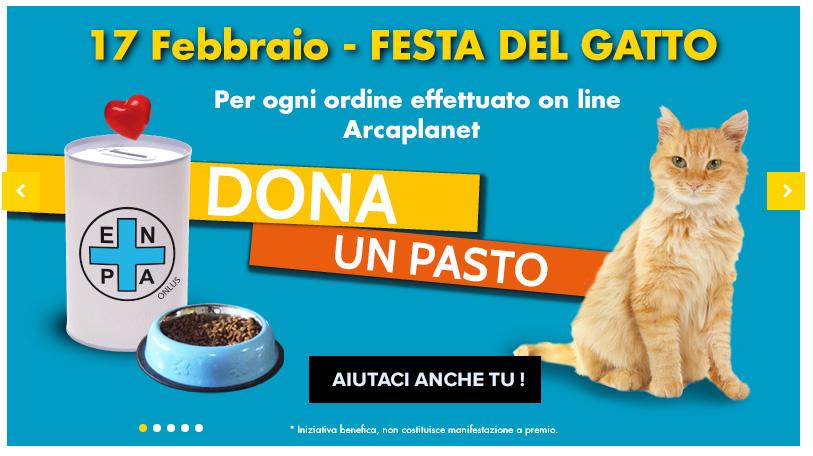 Festa del Gatto, un pasto per i trovatelli con Arcaplanet