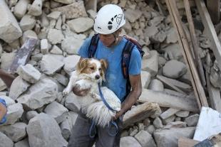 Emergenza terremoto, prosegue la raccolta in Canile