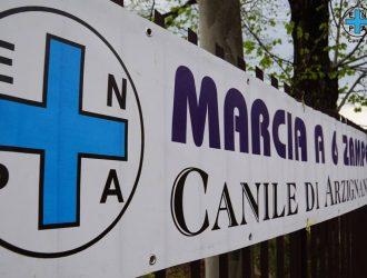 La Marcia a 6 zampe torna a Montecchio Maggiore