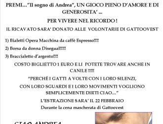 Il sogno di Andrea